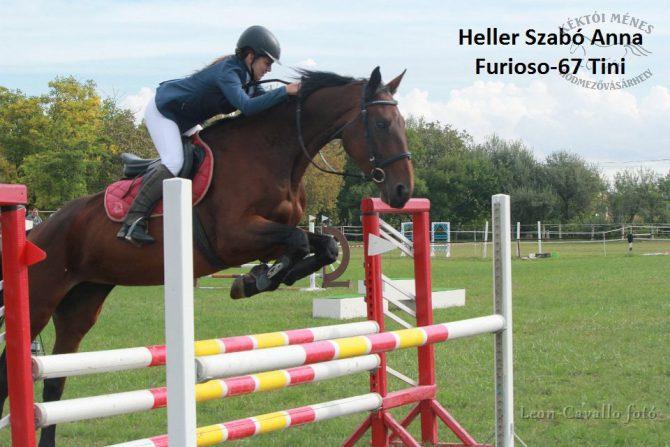 furioso-lovak-a-csongrad-megyei-dijugrato-donton-07