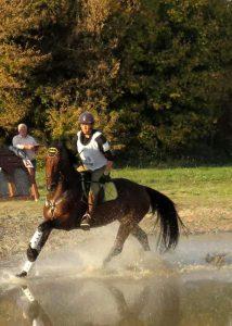 """Gelencsér Gitta és North Star XIV-39 """"TÖVIS"""" Military Országos Bajnok előkezdő lovak kategóriájában"""