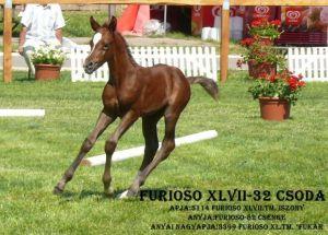 Furioso XLVII-32 Csoda